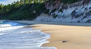 Tour a Praia de Pipa
